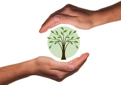 eco friendly garden ideas
