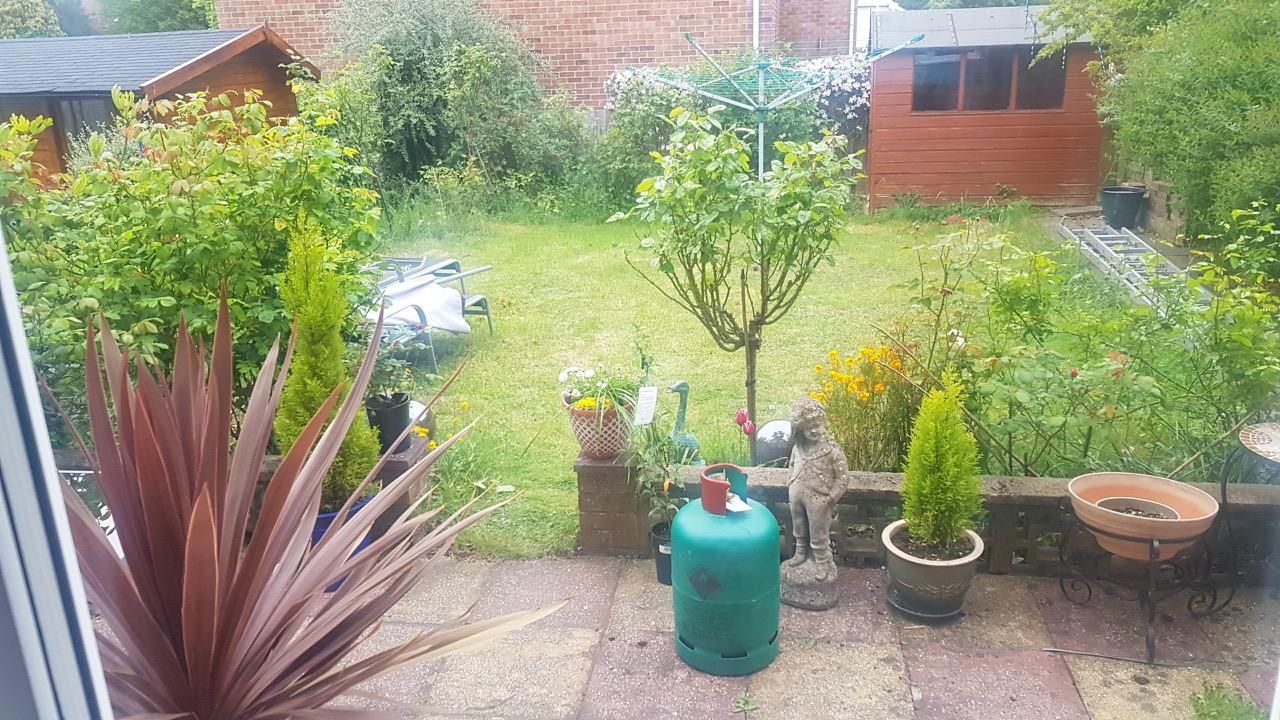 Garden before decking